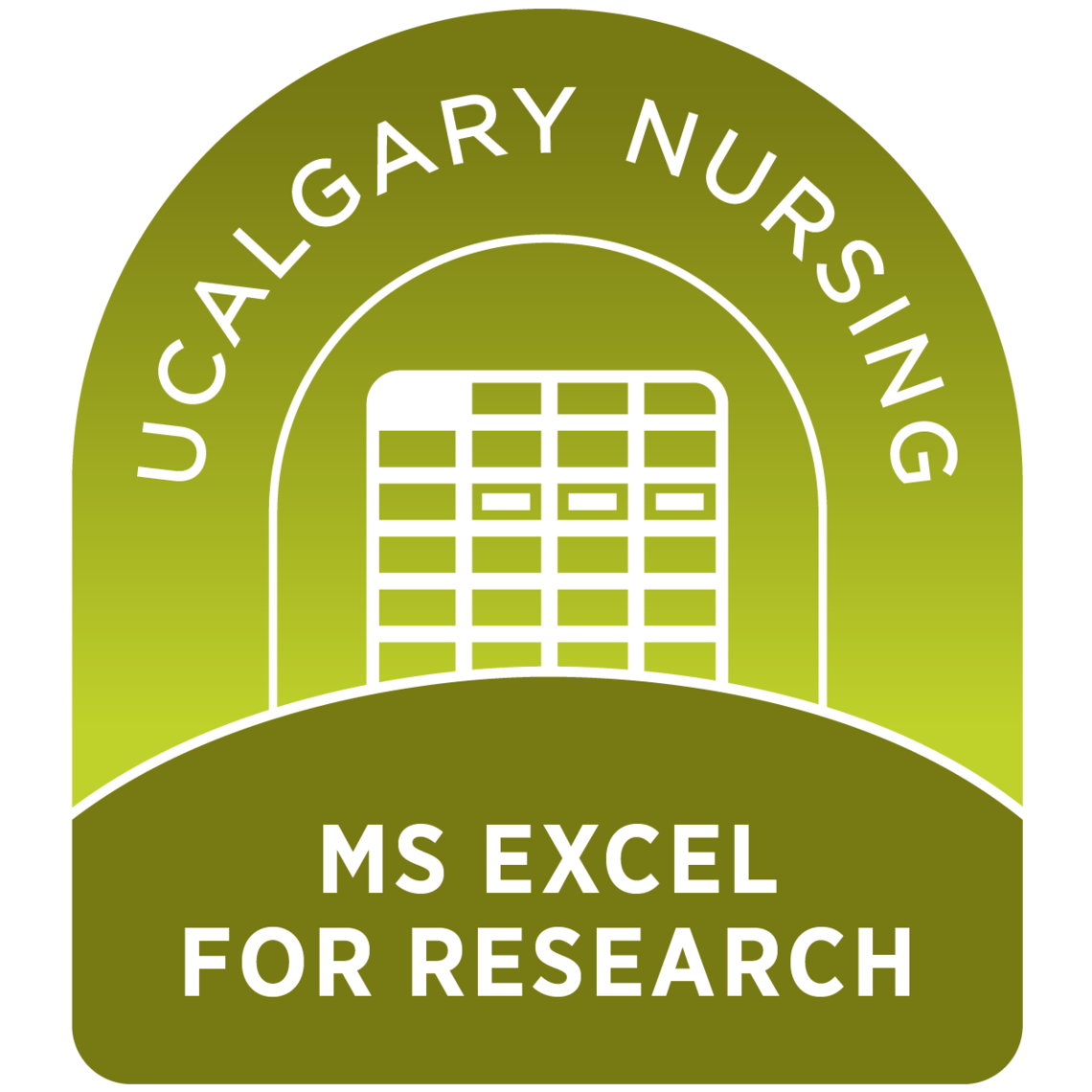 MS Excel for Research